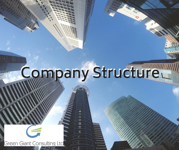 Having the right company structure